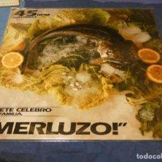Discos de vinil: MUSICA ELECTRONICA MAXI PETETE CELEBRO Y LA FAMILIA MERLUZO BUEN ESTADO. Lote 275715943