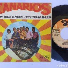 Discos de vinil: LOS CANARIOS - GET ON YOUR KNEES. Lote 277160298