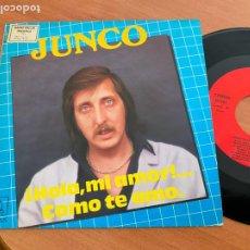 Discos de vinilo: JUNCO (HOLA MI AMOR) SINGLE 1986 (EPI24). Lote 277171593