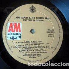 Discos de vinilo: HERB ALPERT & THE TIJUANA BRASS - ¡QUE VIENE LA TIJUANA! (LP, ALBUM) LABEL:A&M RECORDS, HISPAVOX CA. Lote 277715528