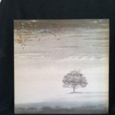 Discos de vinilo: LP GATEFOLD, GENESIS - WIND & WUTHERING (LP, ALBUM, GAT), 1976 ESPAÑA, IMPECABLE!!. Lote 280407658