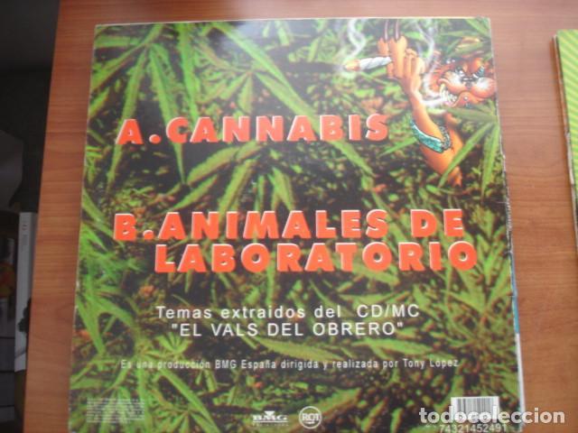 Discos de vinilo: Ska-P Cannabis - Foto 2 - 287736123