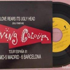 "Discos de vinilo: 7"" LIVING COLOUR - LOVE REARS IT'S UGLY HEAD - SPAIN - PROMO - 1SIDED (EX+/EX+). Lote 287750103"