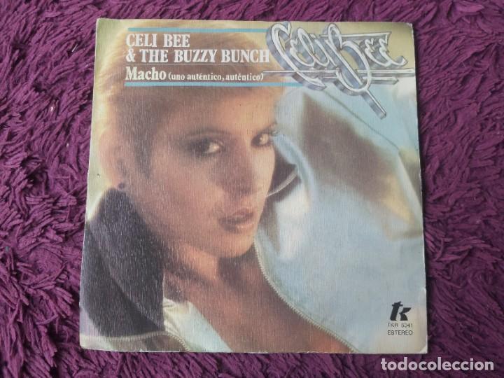 """CELI BEE AND THE BUZZY BUNCH – MACHO ,VINYL, 7"""" SINGLE 1978 SPAIN TKR 6041 (Música - Discos - Singles Vinilo - Electrónica, Avantgarde y Experimental)"""