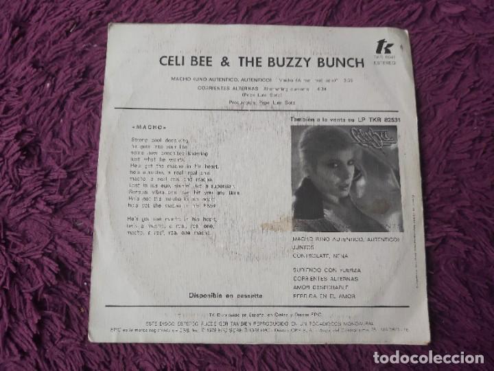 "Discos de vinilo: Celi Bee And The Buzzy Bunch – Macho ,Vinyl, 7"" Single 1978 Spain TKR 6041 - Foto 2 - 288325583"