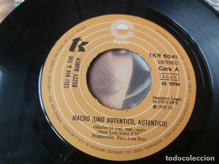 "Discos de vinilo: Celi Bee And The Buzzy Bunch – Macho ,Vinyl, 7"" Single 1978 Spain TKR 6041 - Foto 3 - 288325583"