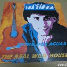 Discos de vinilo: RAUL ORELLANA (MAXI) THE REAL WILD HOUSE (3 TRACKS) AÑO – 1989. Lote 295879378
