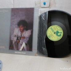 Discos de vinilo: CASAL- PANICO EN EL EDEN--MAXI SINGLE --1984--HARVEST--SPAIN--. Lote 295911918
