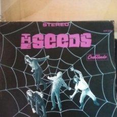 Discos de vinilo: THE SEEDS 1966 °1 ALBUM COPIA REED USA. Lote 297015683