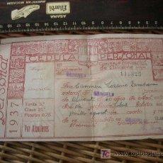 Guerra Civil. Cédula personal. Orihuela, Alicante