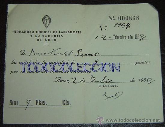 RECIBO HERMANDAD SINDICAL DE LABRADORES Y GANADEROS DE AMER AÑO 1958 (Coleccionismo - Documentos - Otros documentos)