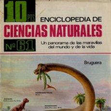 Documentos antiguos: BRUGUERA CIENCIAS NATURALES NUM 61 AÑO 1967 ENCICLOPEDIA . Lote 57392909