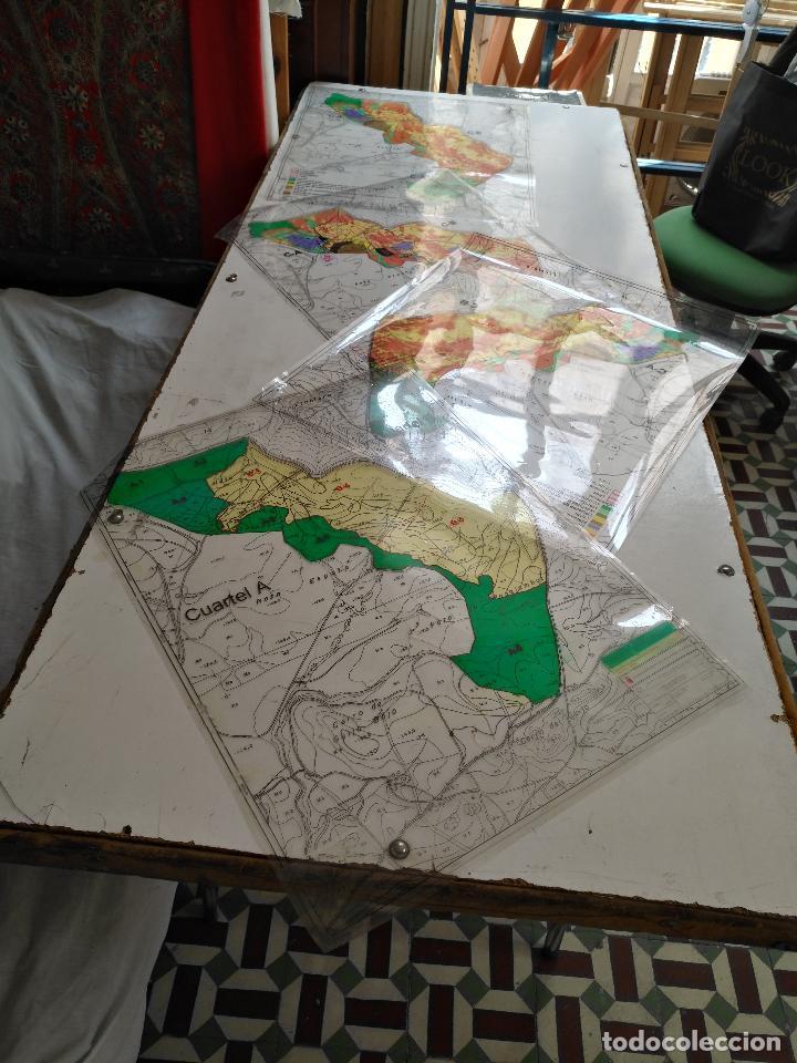 67 X 56 CM 4 MAPAS TRANSPARENCIAS AYUNTAMIENTO CASTELAR DE LA FRONTERA. PLANO DE ZONIFICACION CADIZ (Coleccionismo - Documentos - Otros documentos)