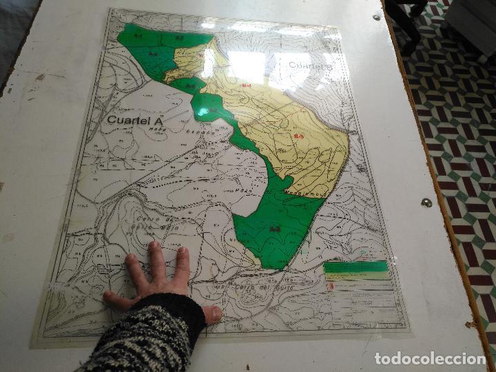 Documentos antiguos: 67 x 56 cm 4 mapas transparencias ayuntamiento castelar de la frontera. plano de zonificacion cadiz - Foto 3 - 118809763