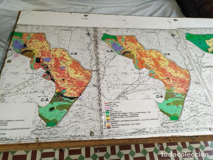 Documentos antiguos: 67 x 56 cm 4 mapas transparencias ayuntamiento castelar de la frontera. plano de zonificacion cadiz - Foto 7 - 118809763