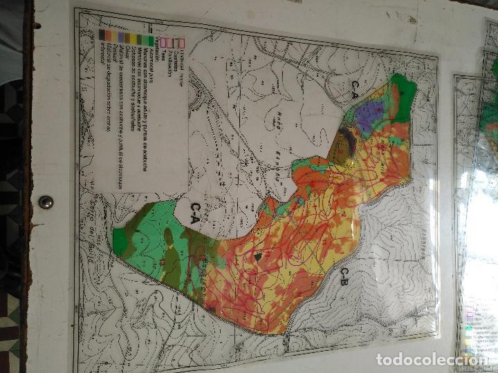Documentos antiguos: 67 x 56 cm 4 mapas transparencias ayuntamiento castelar de la frontera. plano de zonificacion cadiz - Foto 13 - 118809763