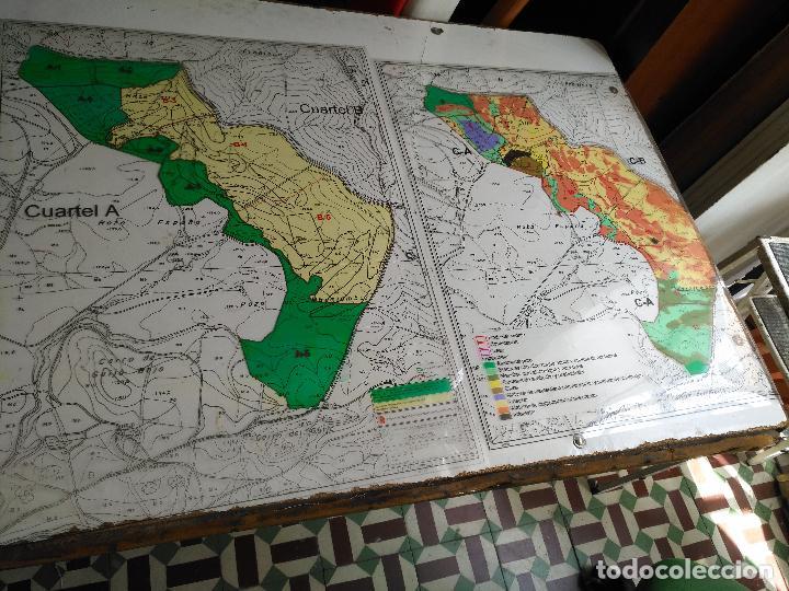 Documentos antiguos: 67 x 56 cm 4 mapas transparencias ayuntamiento castelar de la frontera. plano de zonificacion cadiz - Foto 14 - 118809763
