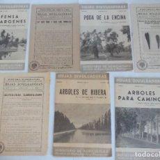Documentos antiguos: ÁRBOLES SELVICULTURA HOJAS DIVULGADORAS 8 FOLLETOS =. Lote 120388547