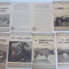 Documentos antiguos: HOJAS DIVULGACIÓN MINISTERIO DE AGRICULTURA SOBRE LAS VACAS=. Lote 120392095