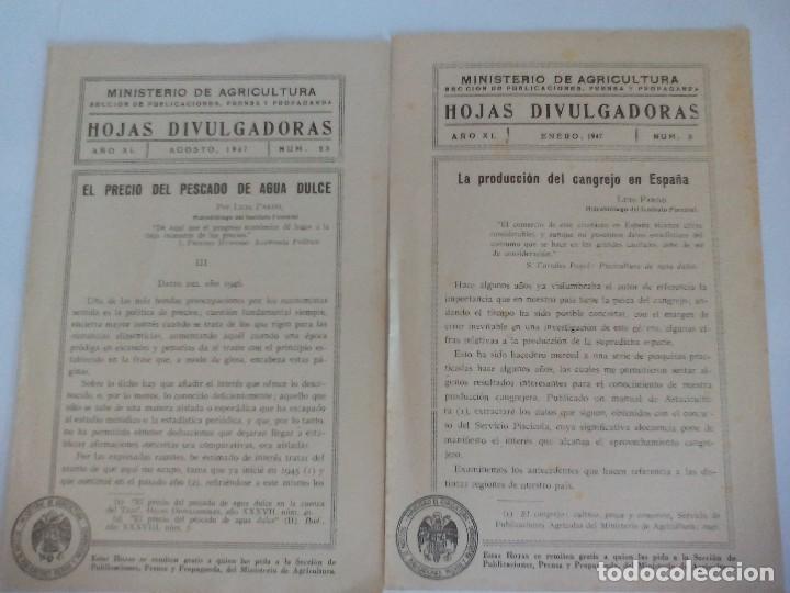 HOJAS DIVULGACIÓN MINISTERIO DE AGRICULTURA SOBRE EL CANGREJO (Coleccionismo - Documentos - Otros documentos)