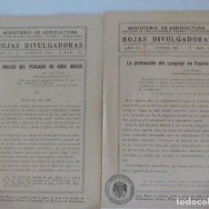 Documentos antiguos: HOJAS DIVULGACIÓN MINISTERIO DE AGRICULTURA SOBRE EL CANGREJO. Lote 120393311