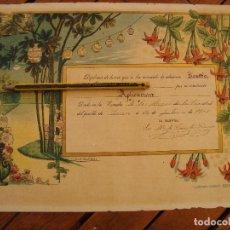 Documentos antiguos: DIPLOMA ESCUELA HIJAS DE LA CARIDAD. SINEU. MALLORCA, 1911. ILUSTRACIONES DE COLL SALIETI.. Lote 125266331