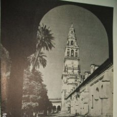 Documentos antiguos: CÓRDOBA TORRE DE LA CATEDRAL, LÁMINA AÑOS 40. Lote 131720722