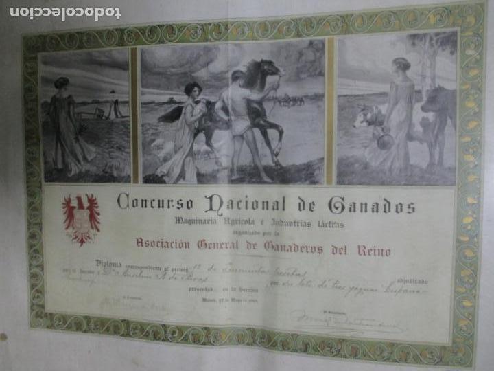 Documentos antiguos: DIPLOMA PRIMER PREMIO. CONCURSO NACIONAL DE GANADOS. ASOCIACIÓN GENERAL DE GANADEROS DEL REINO. - Foto 2 - 140366330
