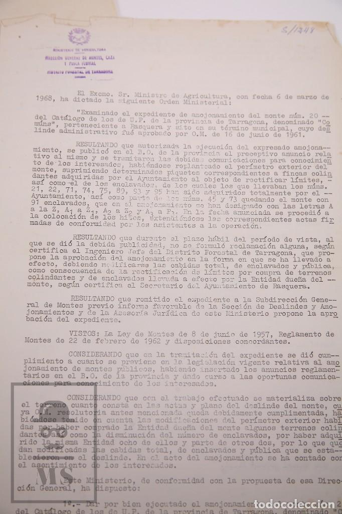 Documentos antiguos: Conjunto de Documentos y Escrituras - Rasquera, Tortosa, Domingo Piñana y Homedes - Años 30-60 - Foto 10 - 168704260