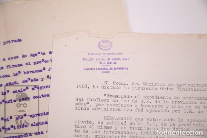 Documentos antiguos: Conjunto de Documentos y Escrituras - Rasquera, Tortosa, Domingo Piñana y Homedes - Años 30-60 - Foto 11 - 168704260