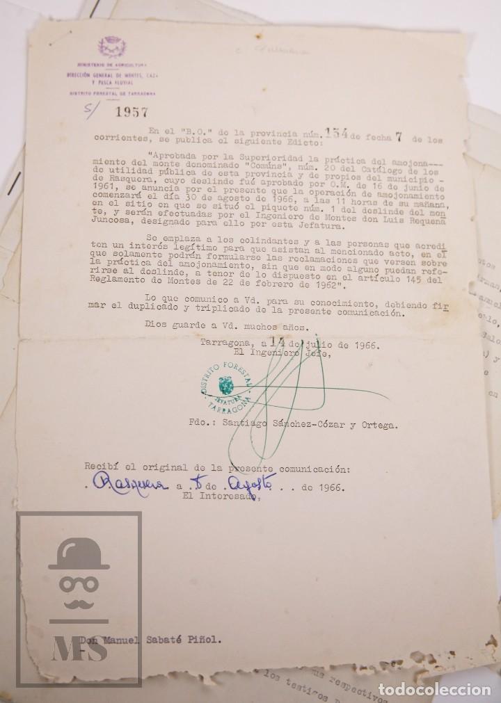 Documentos antiguos: Conjunto de Documentos y Escrituras - Rasquera, Tortosa, Domingo Piñana y Homedes - Años 30-60 - Foto 16 - 168704260