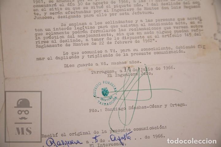 Documentos antiguos: Conjunto de Documentos y Escrituras - Rasquera, Tortosa, Domingo Piñana y Homedes - Años 30-60 - Foto 17 - 168704260