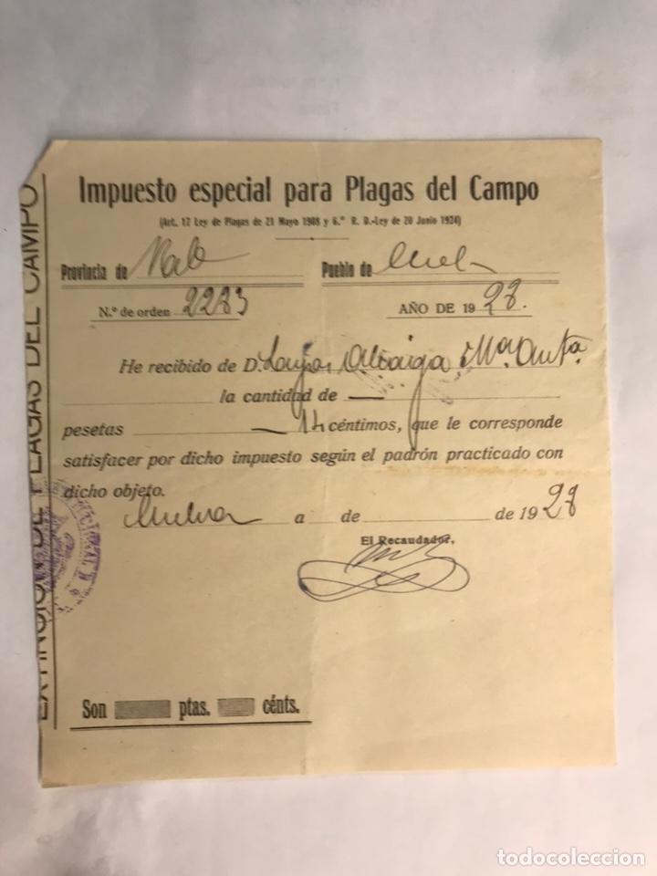DOCUMENTOS. CHELVA (VALENCIA) RECIBO MUNICIPAL IMPUESTO ESPECIAL PARA PLAGAS DEL CAMPO (A.1928) (Coleccionismo - Documentos - Otros documentos)