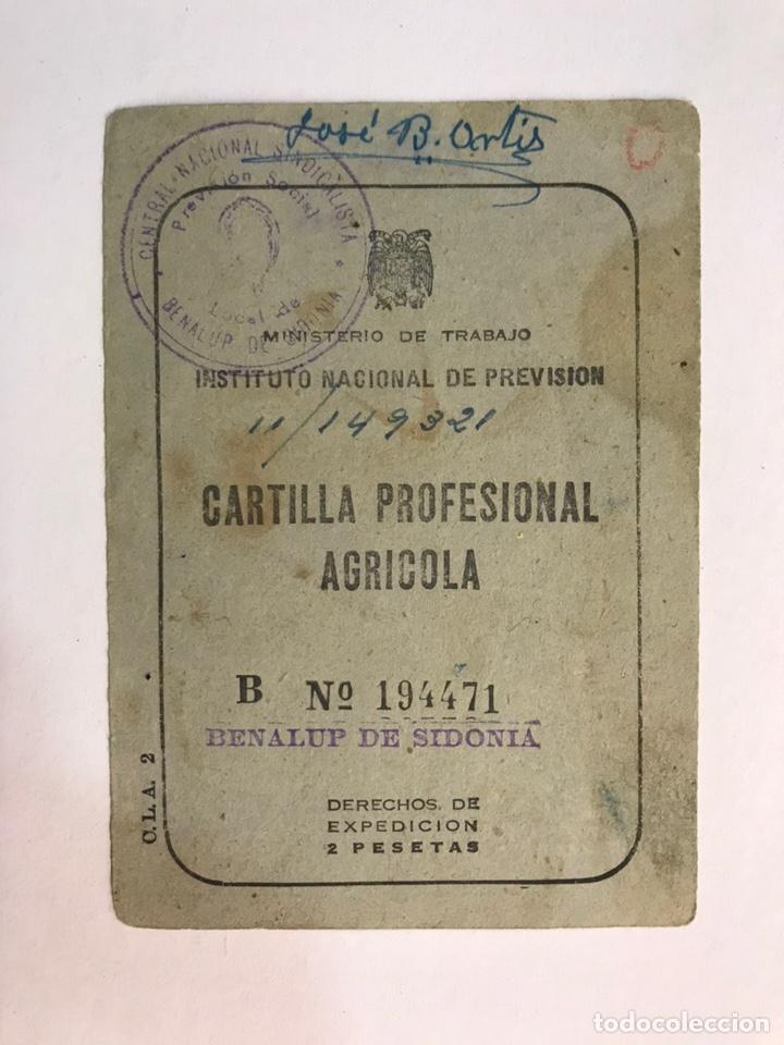 BENALUP DE SIDONIA (CÁDIZ) CARNET DOCUMENTO CARTILLA PROFESIONAL AGRICOLA (A.1969) (Coleccionismo - Documentos - Otros documentos)