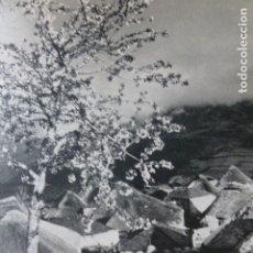 Documentos antigos: LOS ANCARES LUGO PALLOZAS ANTIGUA LAMINA HUECOGRABADO AÑOS 40. Lote 178688506