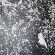 Documentos antiguos: ARANJUEZ MADRID JARDINES ANTIGUA LAMINA HUECOGRABADO. Lote 183255933