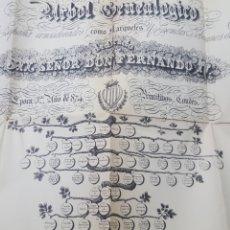 Documentos antiguos: GRAN ARBOL GENEALOGICO DE LOS REYES DE ESPAÑA CONSIDERADOS COMO CONDES SOBERANOS DE BARCELONA.. Lote 191891045