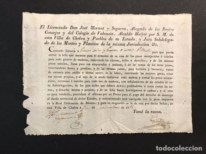 CHELVA. CONCEDE LICENCIA Y PERMISO PARA LA PODA DE PINOS VIEJOS.. PARA EL CONSUMO PROPIO (A.1815) (Coleccionismo - Documentos - Otros documentos)