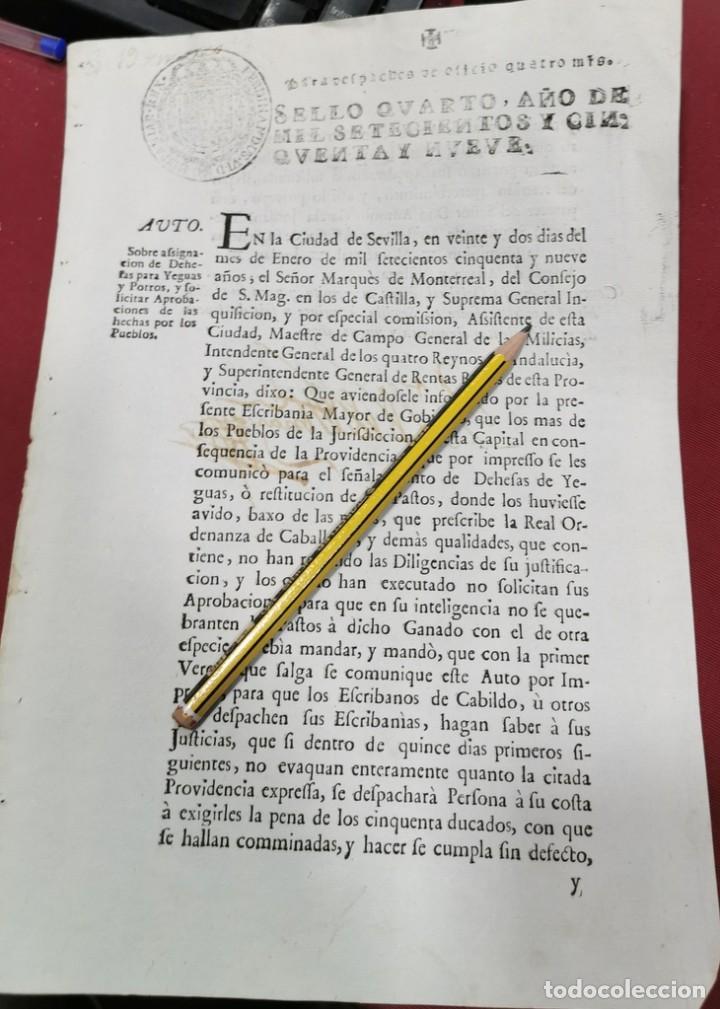 SEVILLA, 1759, ASIGNACION DE DEHESAS PARA YEGUAS Y POTROS, 2 PAGINAS (Coleccionismo - Documentos - Otros documentos)