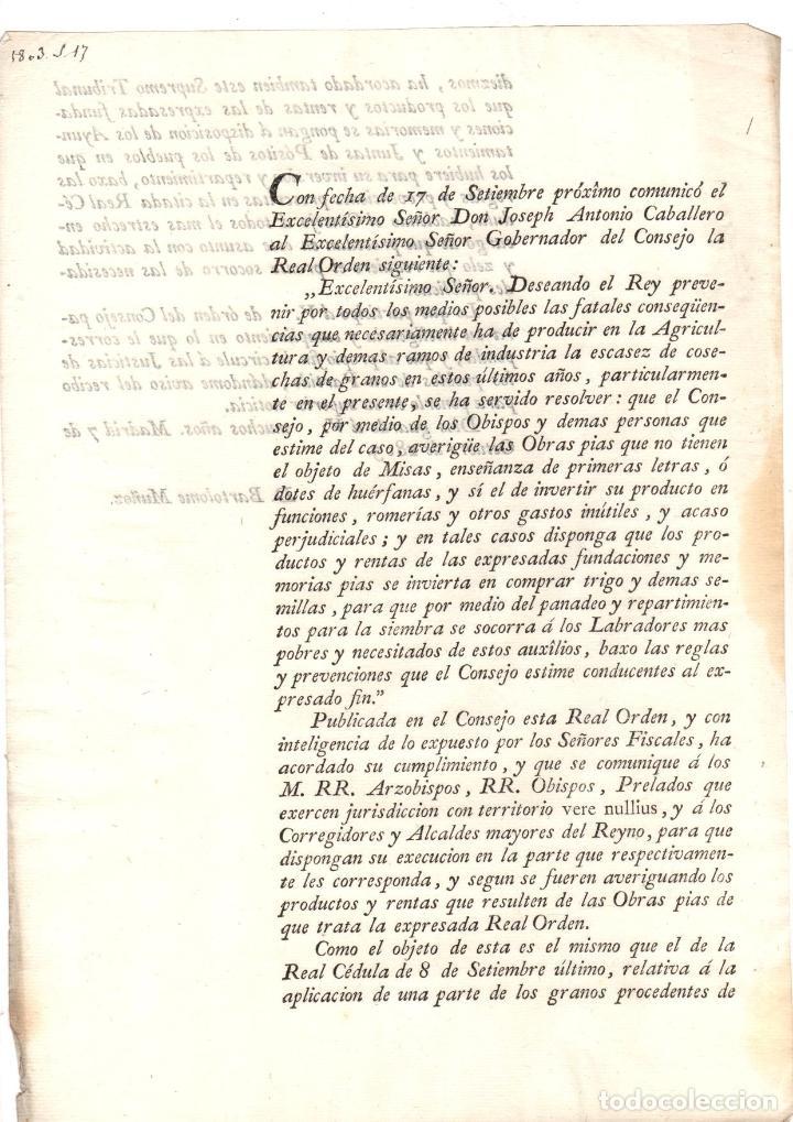 ORDEN REAL SOBRE INVERSION DE PRODUCTOS Y RENTAS DE OBRAS PIAS A COMPRAR TRIGO Y SEMILLAS 1803 (Coleccionismo - Documentos - Otros documentos)