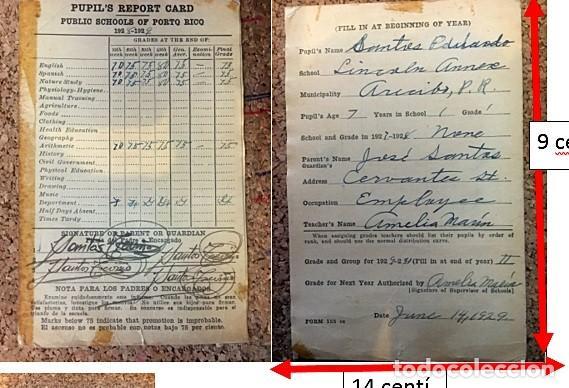 PUPIL´S REPORT CARD, PUBLIC SCHOOL PUERTO RICO, 1928-1929 (Coleccionismo - Documentos - Otros documentos)