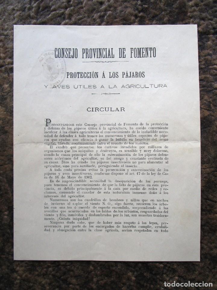 ANTIGUA CIRCULAR CONSEJO PROVINCIAL DE FOMENTO PROTECCION DE LAS AVES AÑO 1911 (Coleccionismo - Documentos - Otros documentos)