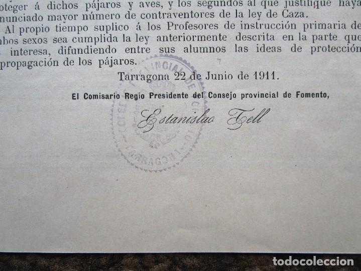 Documentos antiguos: antigua circular consejo provincial de fomento proteccion de las aves año 1911 - Foto 4 - 242853970