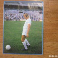 Coleccionismo deportivo: LAMINA MAXI CROMO REAL MADRID ASEGURATOR GRUPO OTAYSA Nº 83 GUNTER NETZER - 24 X 18 CMS.. Lote 110118259