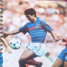 Coleccionismo deportivo: FICHA DE LAS SUPER ESTRELLAS DE MASTERFILE - EDICION INGLESA - ALAIN GIRESSE FRANCIA. Lote 280104698
