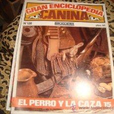 Enciclopedias antiguas: GRAN ENCICLOPEDIA CANINA , BRUGUERA, NUMERO 120. Lote 22555662