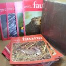 Enciclopedias antiguas: 44 ENTREGAS FASCICULOS - ENCICLOPEDIA FAUNA SALVAT 1975 FELIZ RODRIGUEZ DE LA FUENTE +REGALOTAPAS . Lote 32081154