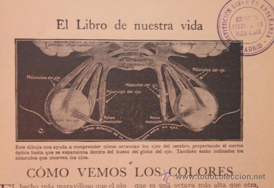 Enciclopedias antiguas: TESORO DE LA JUVENTUD – TOMO XV - Foto 6 - 34251816