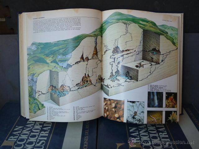 Enciclopedias antiguas: GRAN DICCIONARIO ENCICLOPEDICO ILUSTRADO. (12 VOLUMENES) - Foto 4 - 41634903