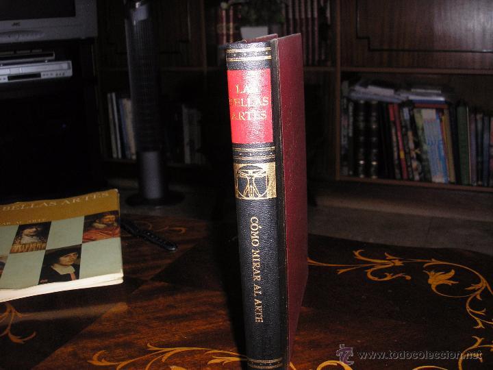 Enciclopedias antiguas: LAS BELLAS ARTES - ENCICLOPEDIA ILUSTRADA DE PINTURA, DIBUJO Y ESCULTURA - 10 TOMOS - Foto 3 - 54060790